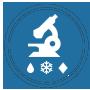Precipitation microphysics